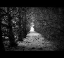 Out of the darkness and into the light. by Samantha Harmon-Smith