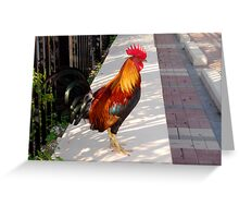 What's about all the Roosters in Key West, Florida Greeting Card