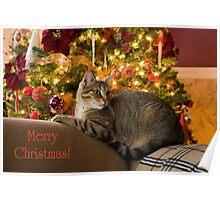 Christmas Kitty  Poster