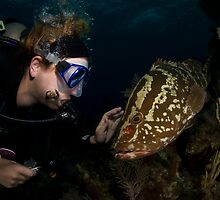 Diver and Nassau Grouper II by Todd Krebs