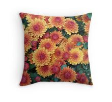 Marvelous Mums (please view large) Throw Pillow