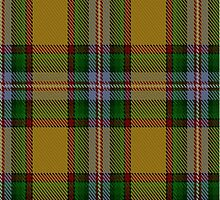 02886 Essex County (Ontario) District Tartan by Detnecs2013