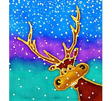 colourful cartoon Silly Stag in the snow. Photographic Print