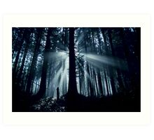 Ethereal Forest Art Print