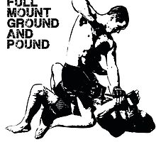 MMA Full mount ground and pound BJJ  by yin888