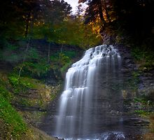 Gorgeous Light over Majestic Falls by RandiScott