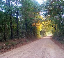 LinFrank Road - Lincoln & Franklin Co. Mississippi by Dan McKenzie