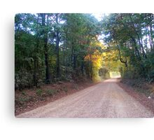 LinFrank Road - Lincoln & Franklin Co. Mississippi Canvas Print
