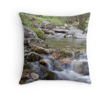 Glendalough Stream Throw Pillow
