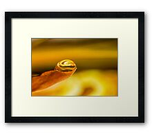 Particles of the Whole Framed Print