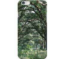 Wood pasture with old oaks iPhone Case/Skin