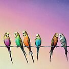 Birds of a Feather by John  Murray