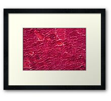 A section trough pancreas cells under the microscope. Framed Print