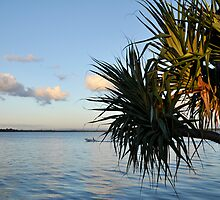 Bribie Island in the Sun (4) by Barbara Burkhardt