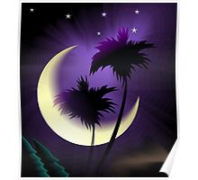Amazing beauty of the Mother nature in the moon light Poster