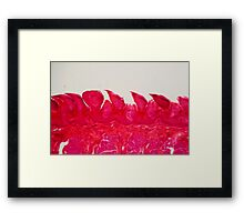 A section trough different tongue cells under the microscope. Framed Print