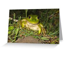 Growling Grass Frog Greeting Card