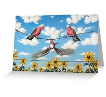 What A Galah Greeting Card