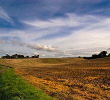 A Bright Autumn Day in Suffolk by Geoff Carpenter