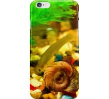 Snail Life iPhone Case/Skin