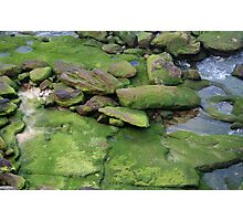 Emerald Veneer Photographic Print