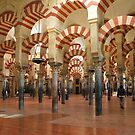 Córdoba Mosque by terezadelpilar ~ art & architecture