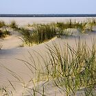Dunes by AnnieSnel