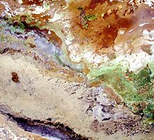 Fields Sand and the Sea - Ariel View by richman