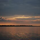 Salmon Sunset by Nick Hart
