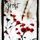 Snow Berries Grow mixed media by DanielleQ