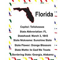 Florida Information Educational Photographic Print