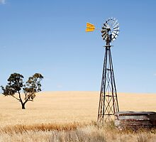 Wind driven water pump South Australia by John Wallace