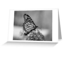 Butterfly Dreamin' Greeting Card