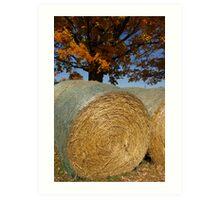 Autumnal Allure Art Print