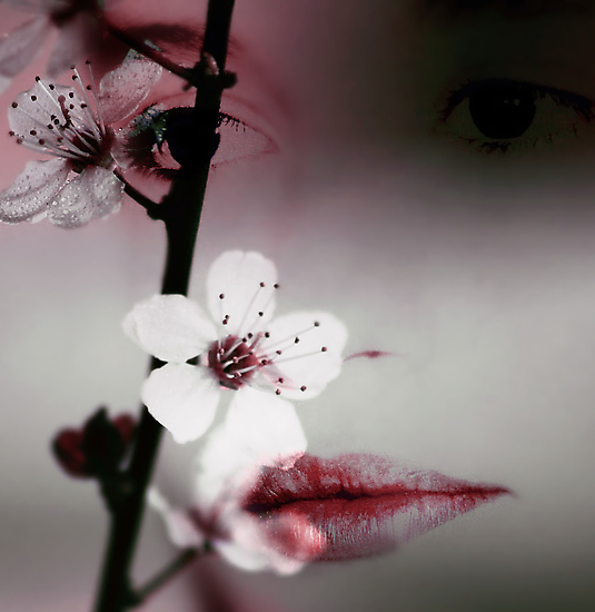 Hidden by Ingz