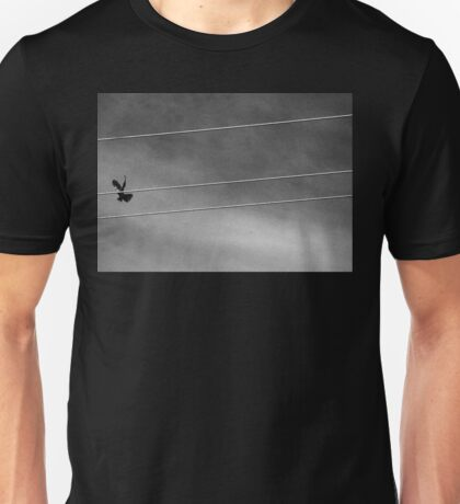 bird in flight  Unisex T-Shirt