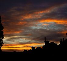 back garden sunset by lurch