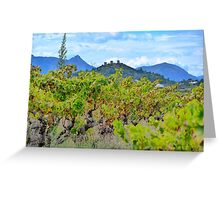 Vineyard with a view Greeting Card