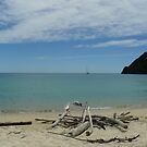 Abel Tasmin, NZ by kalwhite