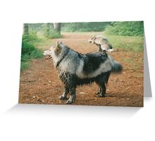 Mud Puddle Greeting Card