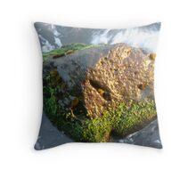 Alchemy Revisited Throw Pillow