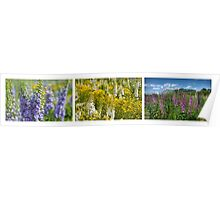 Big-Hearted as Delphinium Poster