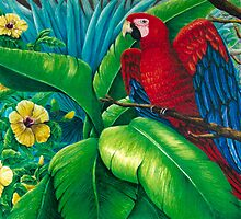 Scarlet Macaws Delight by kwoolingtonart