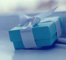 Little blue box by ShereenM