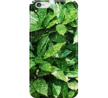 Pruning The Decorative Shrubbery iPhone Case/Skin