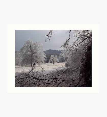 Frozen fields, Fayetteville Arkansas Art Print
