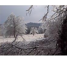Frozen fields, Fayetteville Arkansas Photographic Print