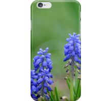 Little Blues iPhone Case/Skin