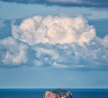 Hippolyte Rock, Tasman Peninsula, Tasmania by Chris Cobern