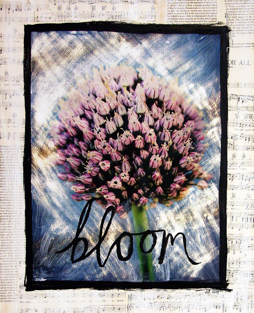 Bloom by DanielleQ